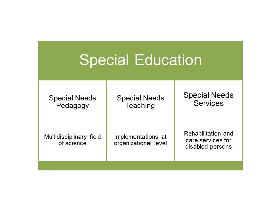 Basics of special education in vocational education and training