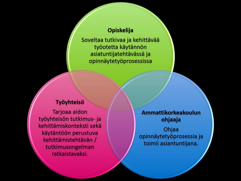 Työelämäyhteistyö (mukaeltu Rissanen, 2007.)